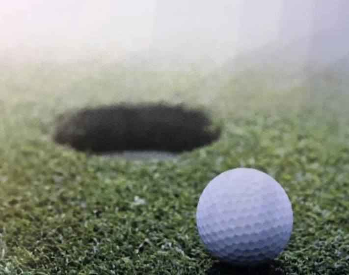 2020 David Wolf Memorial Golf Tournament image
