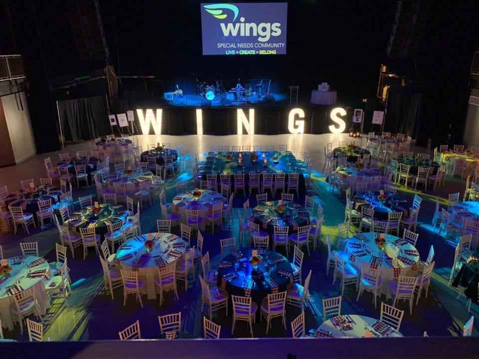 2020 WINGIN' IT for WINGS image