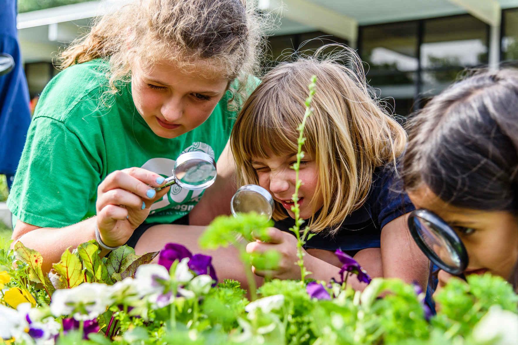 Urban Harvest Grow Resilience: UHI School Gardening Guide image