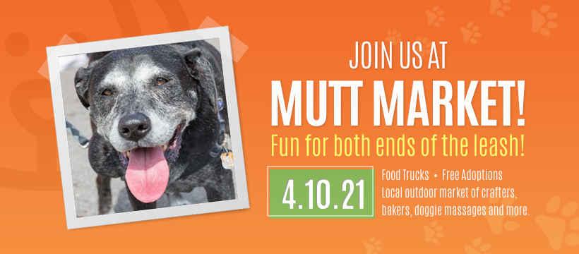 Mutt Market 2021 image