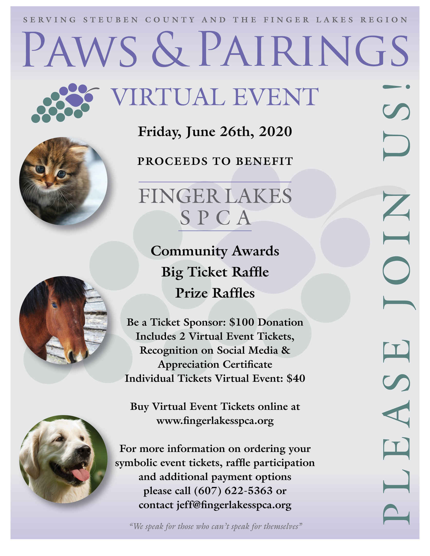 Paws & Pairings Virtual Event image