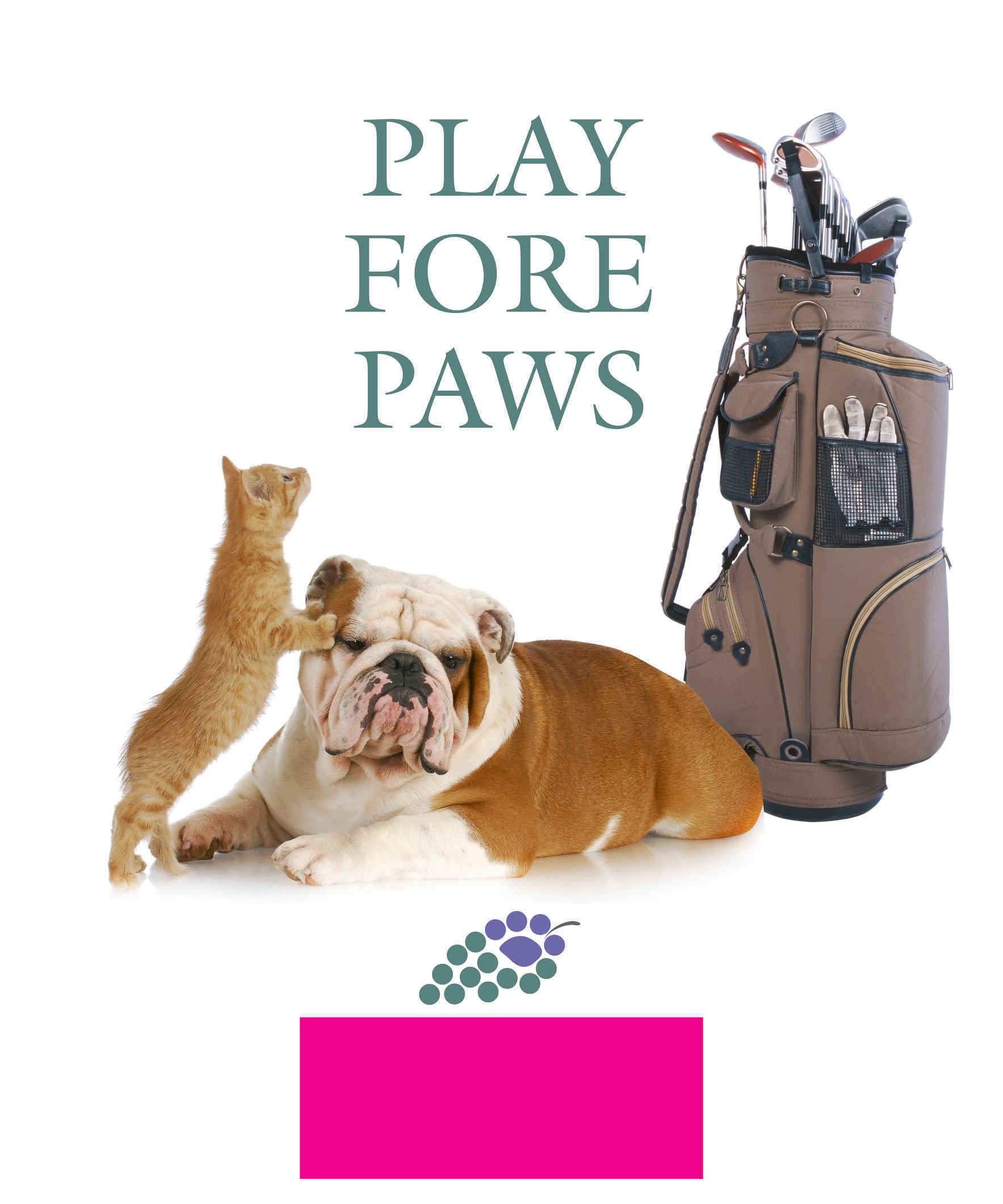 PLAY FORE PAWS image