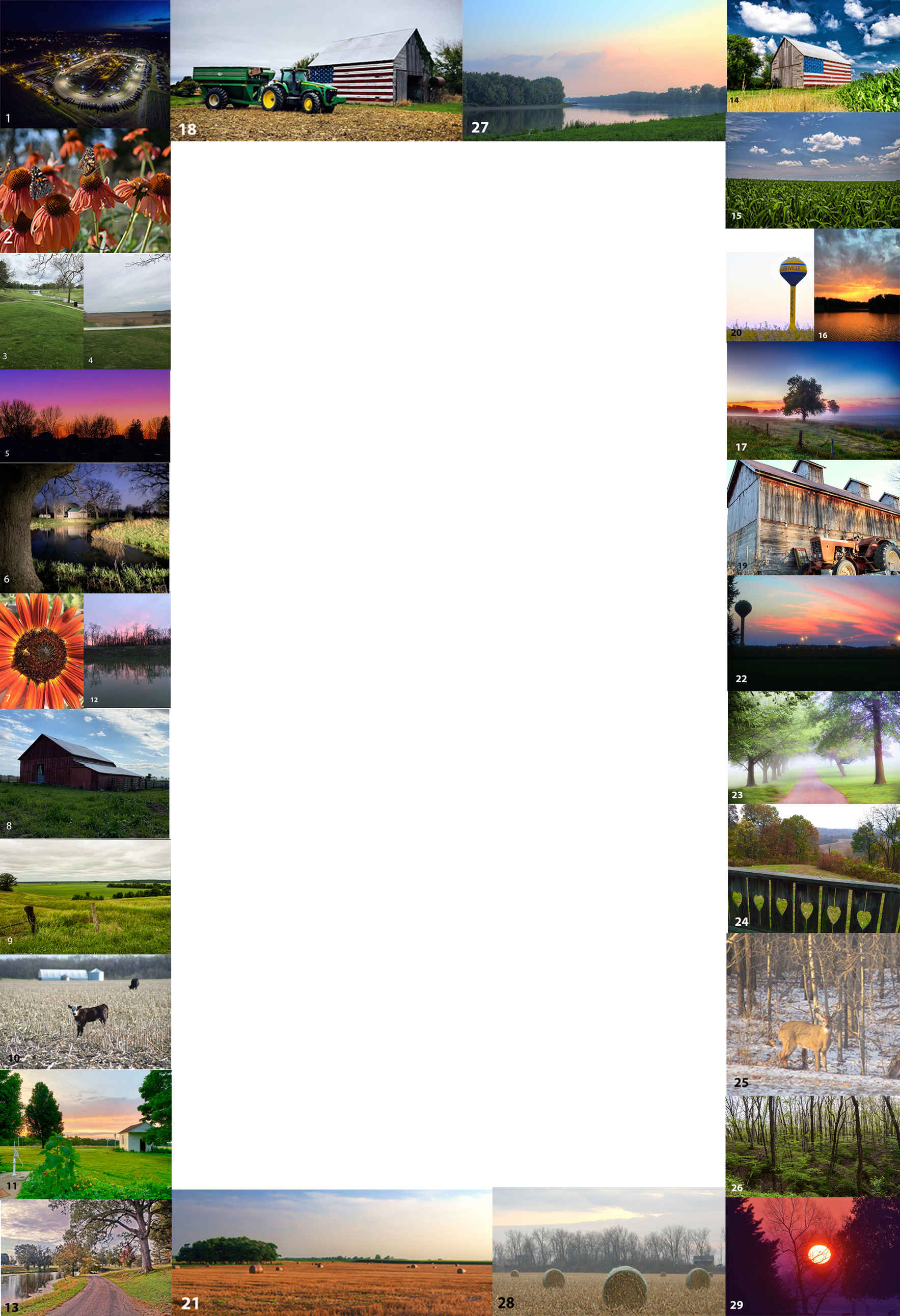 Mural Photography Contest image