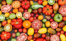 CHP's Tomato Sandwich Supper - 2020, Drive Thru - CLOSED image