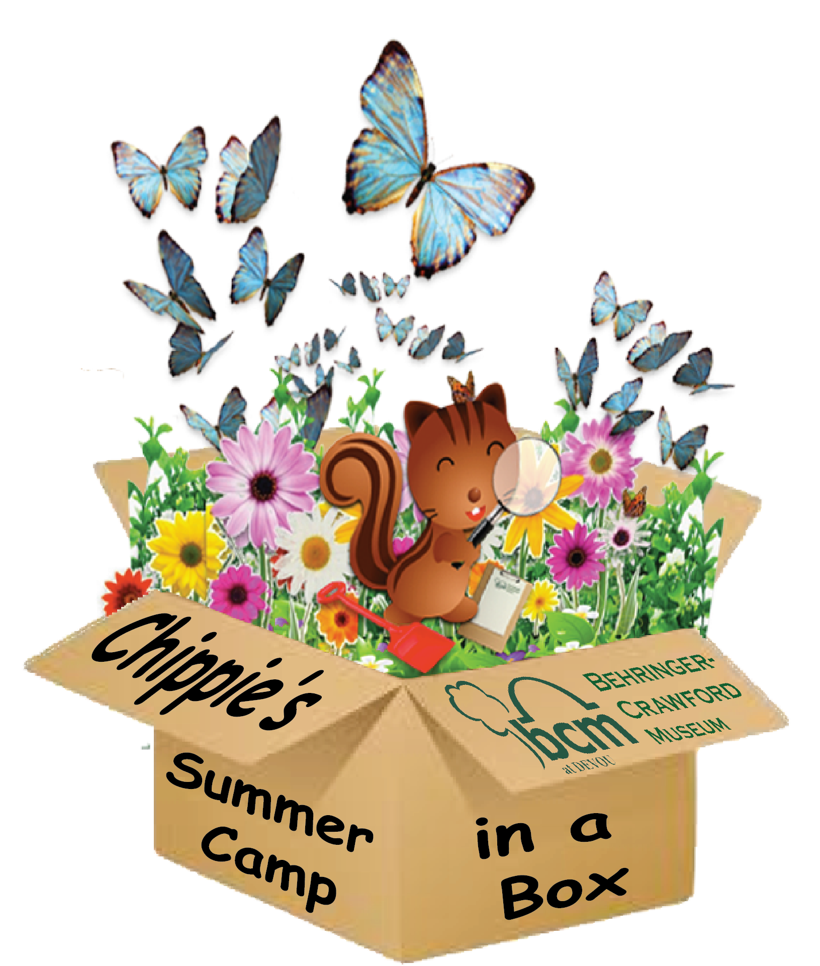 Chippie's Virtual Summer Camp-in-a-Box image
