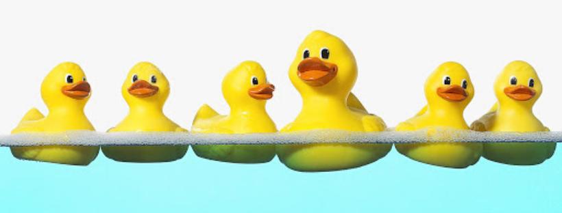 4050-H Virtual Duck Derby image