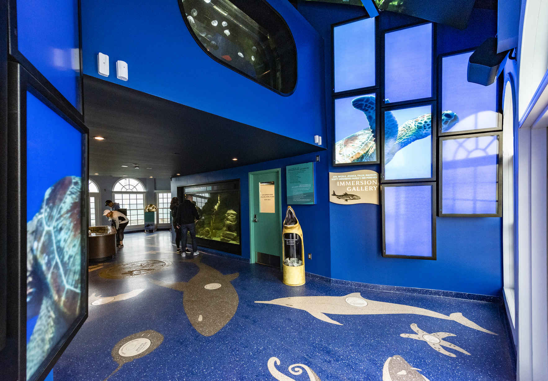 July 1 - Reserve your free entry to the Roundhouse Aquarium image