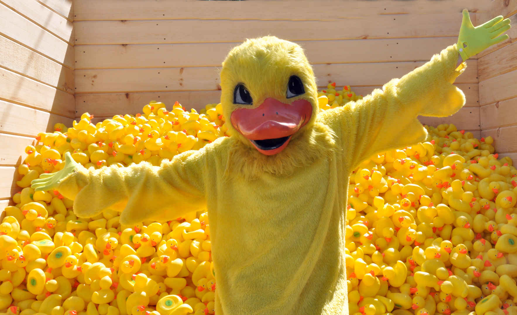 2020 Mega Duck Dash image