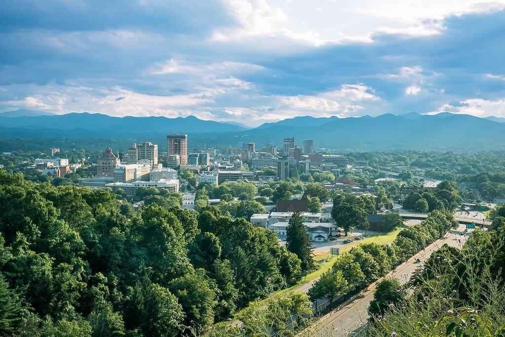 Understanding Asheville's Tree Canopy Preservation Amendment image