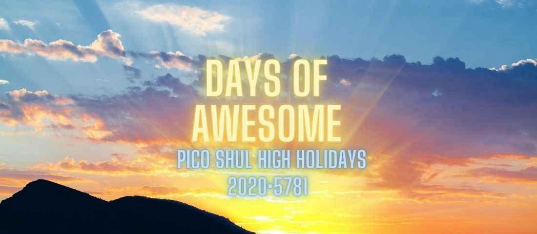 Days of Awesome 2020/5781 image