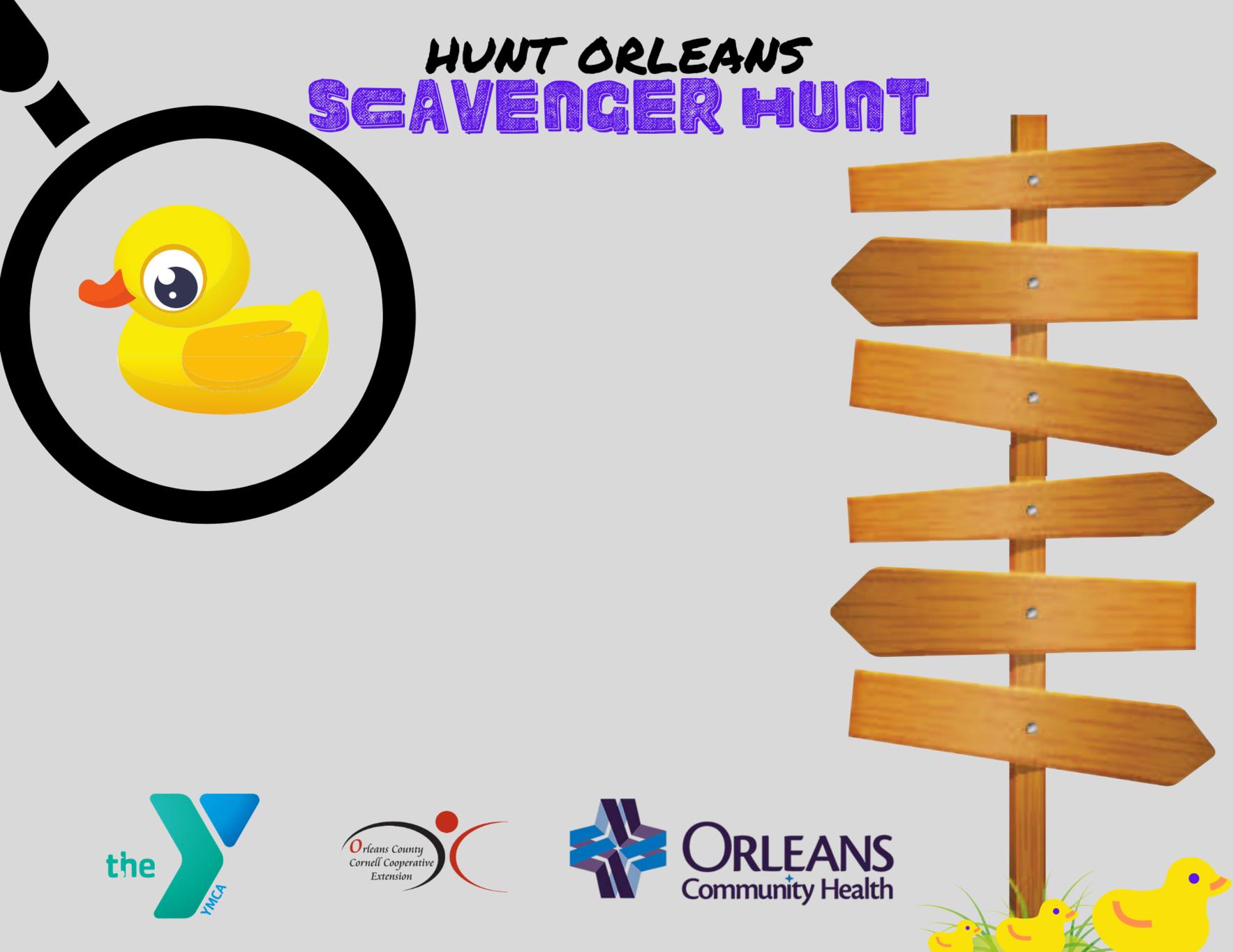 """"""" Hunt Orleans""""  image"""
