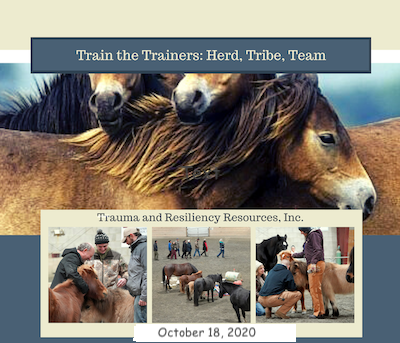 Train the Trainers: Herd, Tribe, Team Virtual Training image