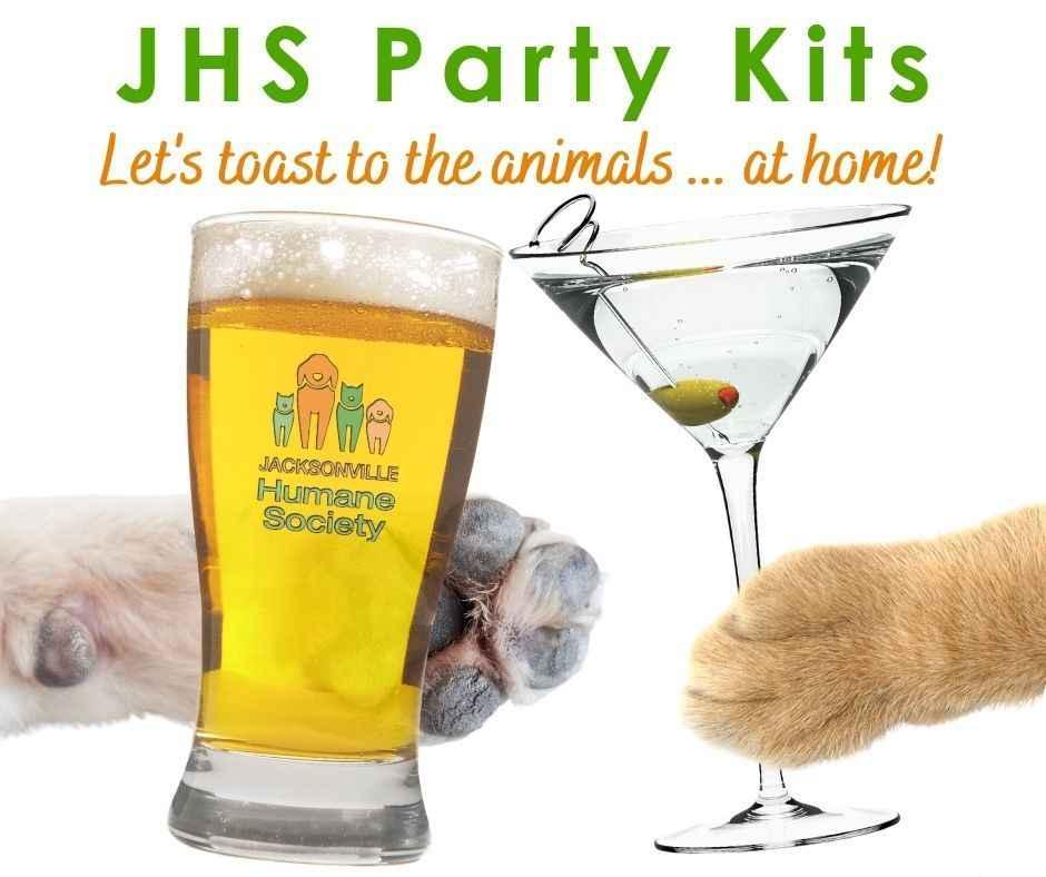Toast to Go - Party Kits  image