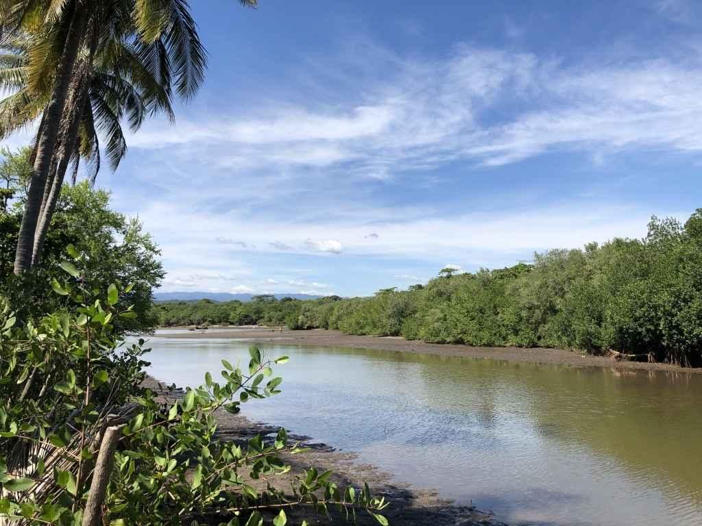 ¡Vamonos! A Virtual Journey to El Salvador and Honduras image