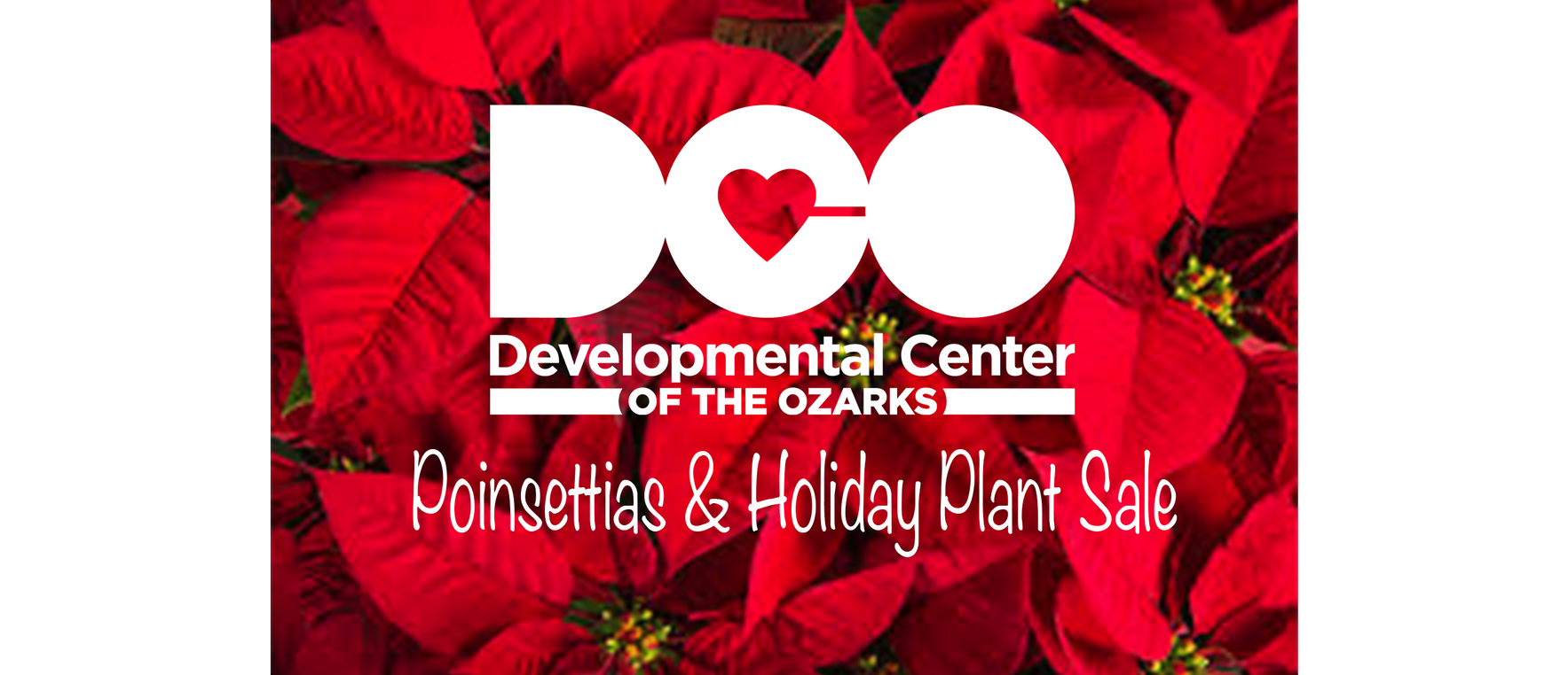Poinsettia Holiday Fundraiser image