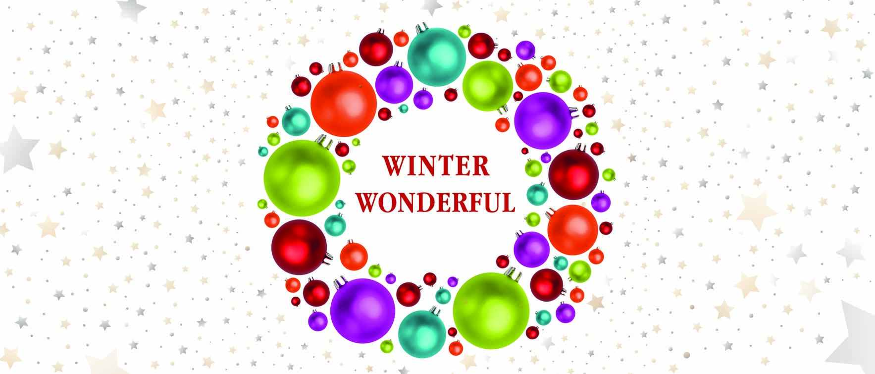 Children's Action Network's Winter Wonderful Kick Off image