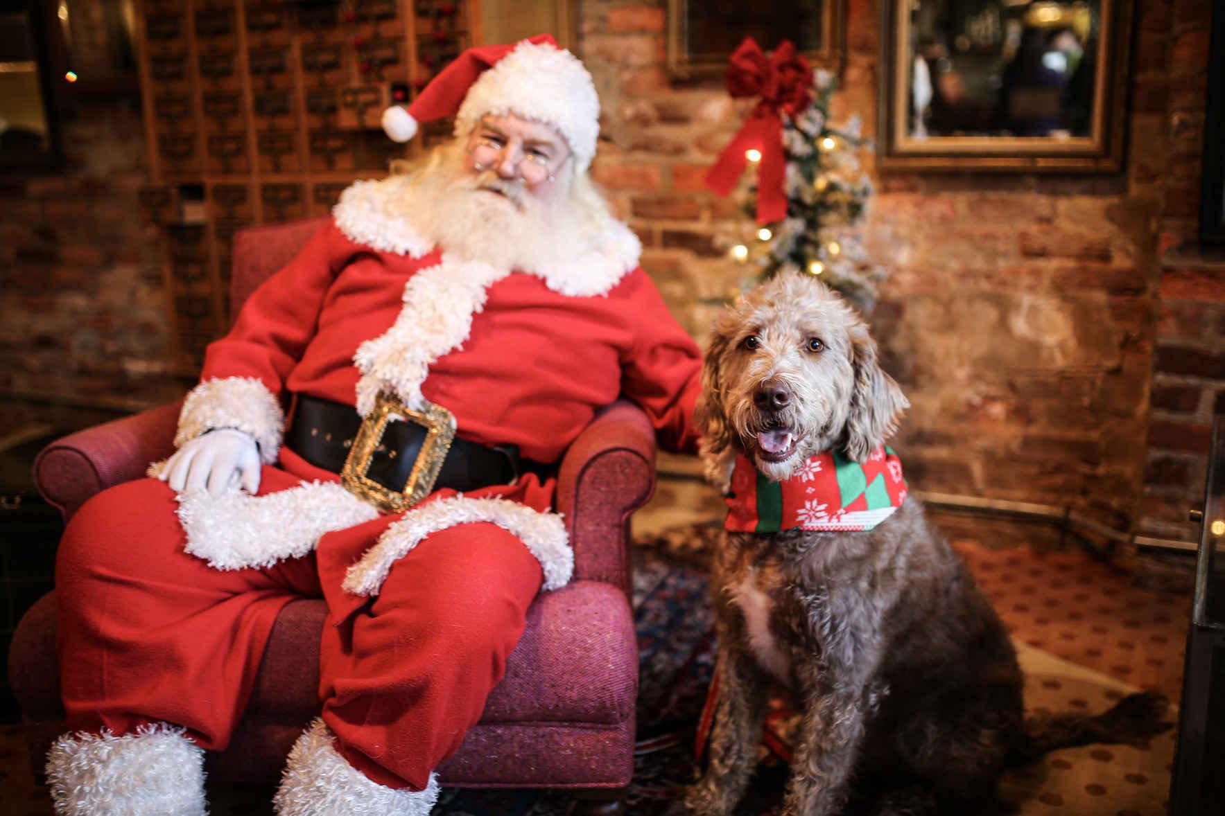 Pets with Santa (Monday) image