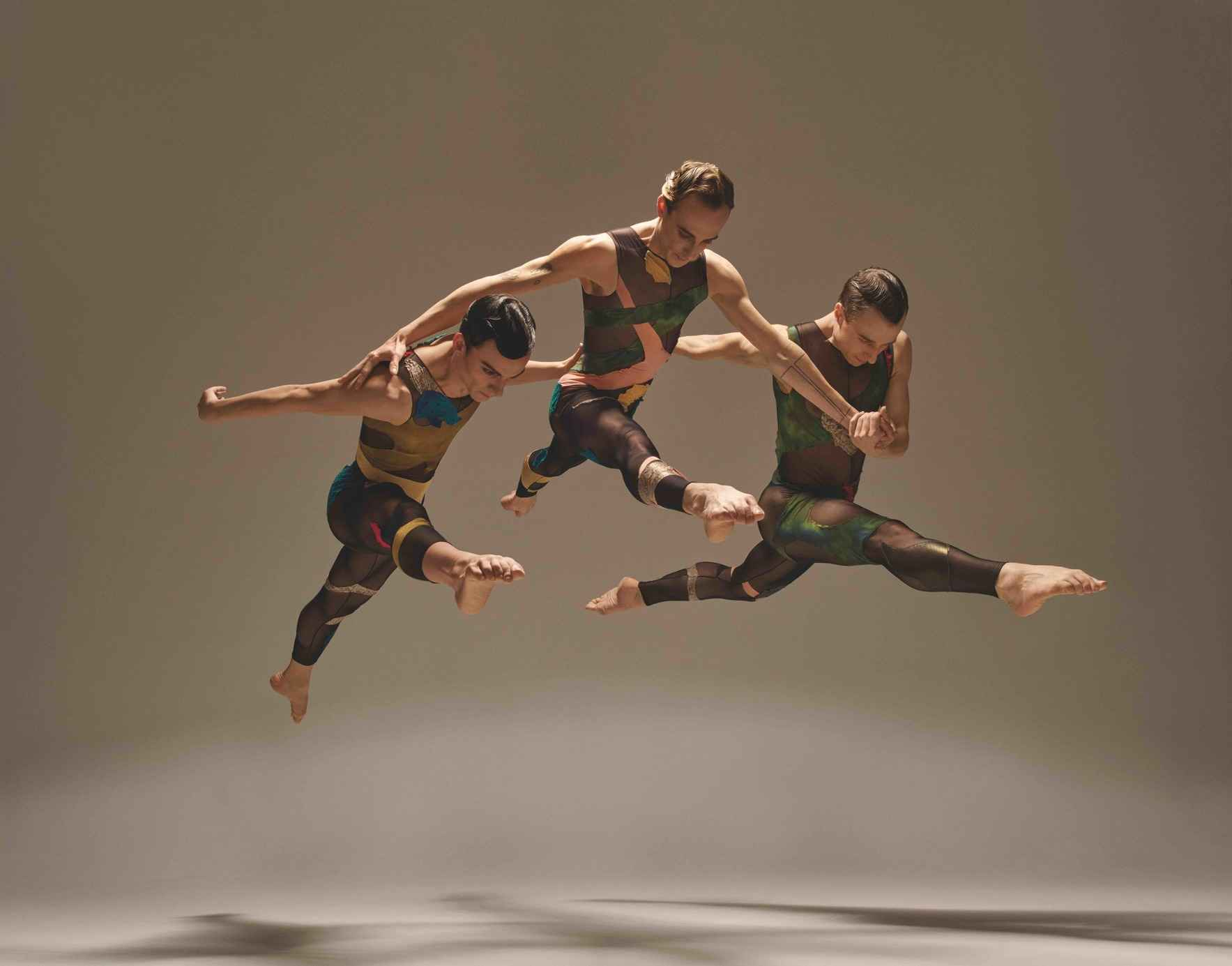 IN ABSENTIA by Stephen Petronio image