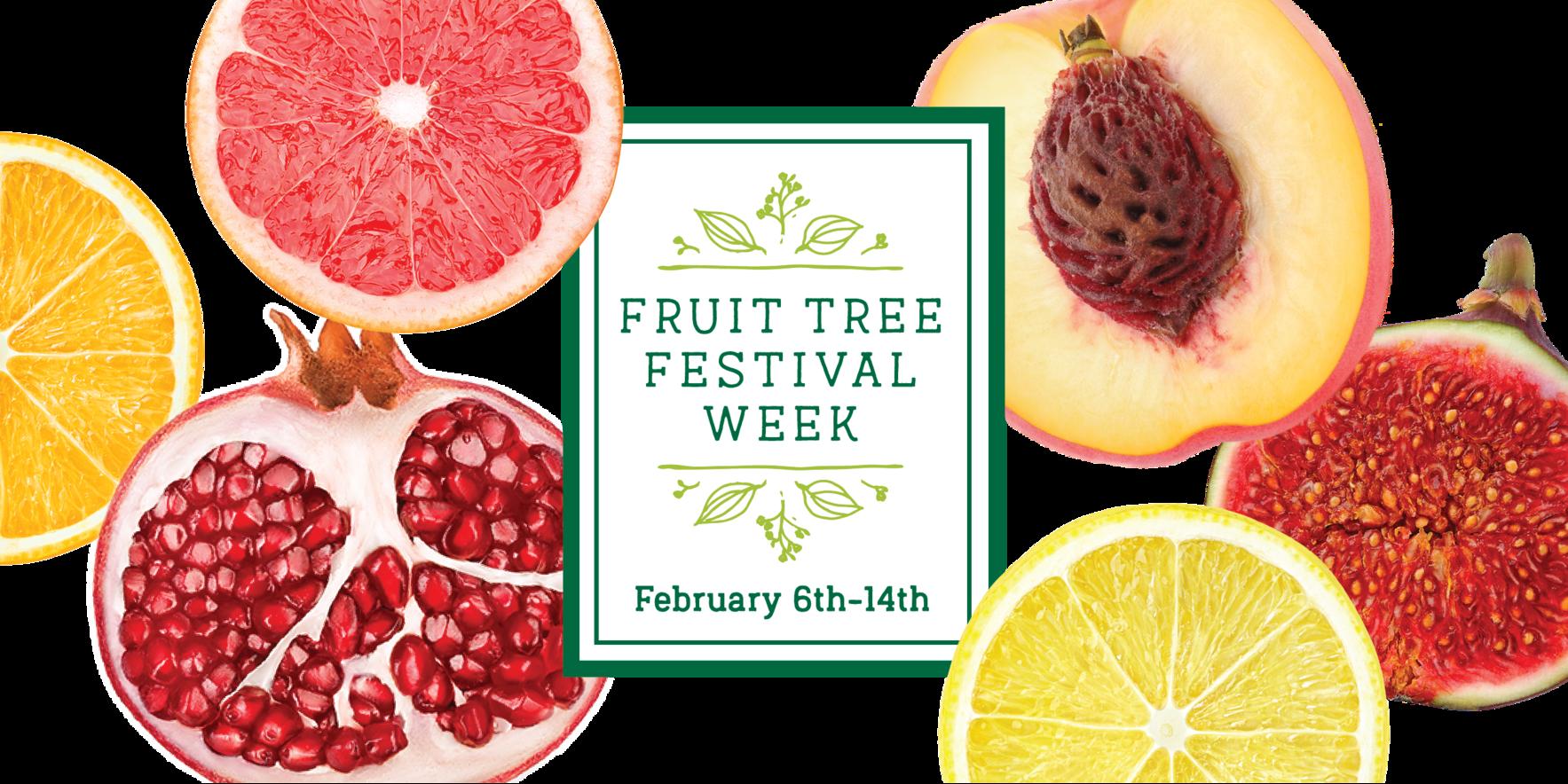 2021 Fruit Tree Festival  image