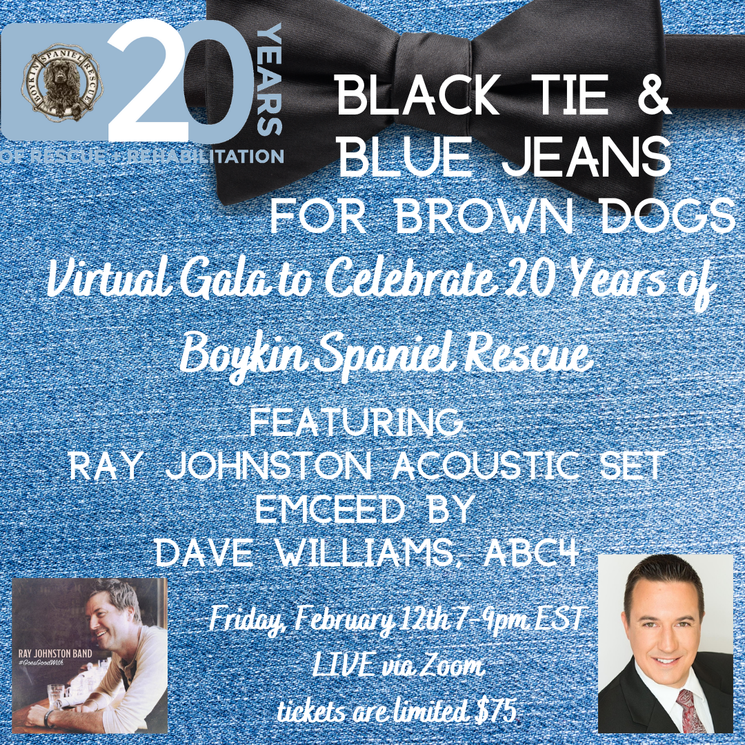 Black Tie & Blue Jeans for Brown Dogs Virtual Gala for BSR's 20th Anniversary! image