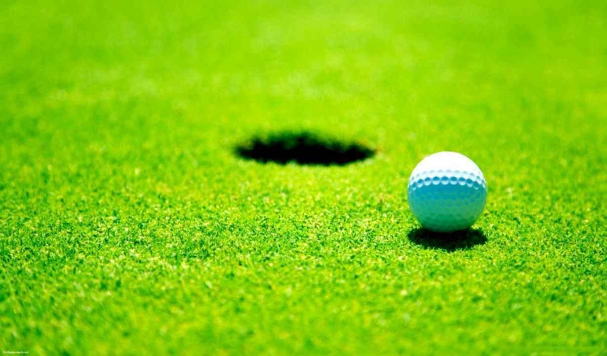 29th Annual Golf Classic 2021 image