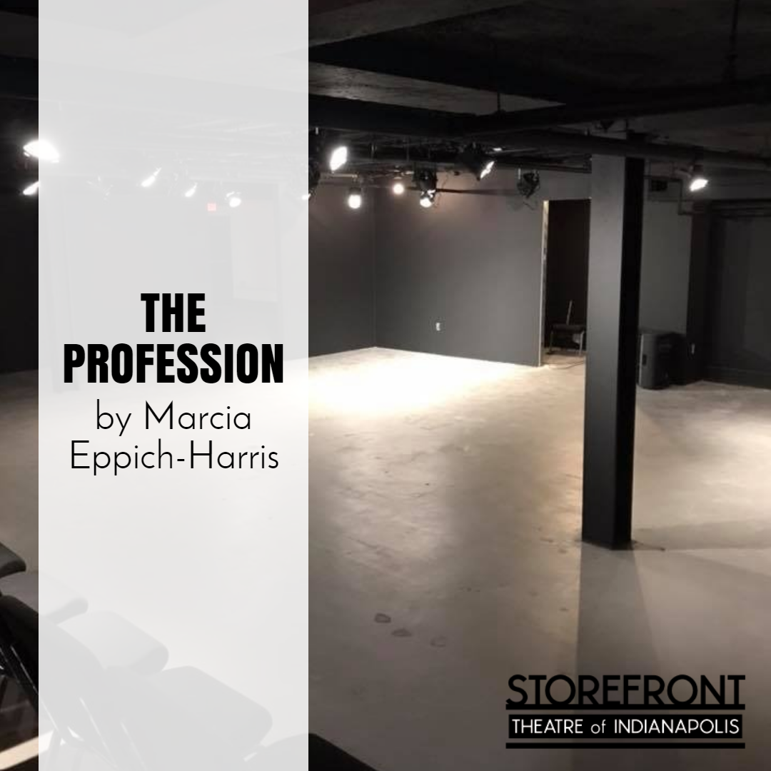 THE PROFESSION, by Marcia Eppich-Harris image