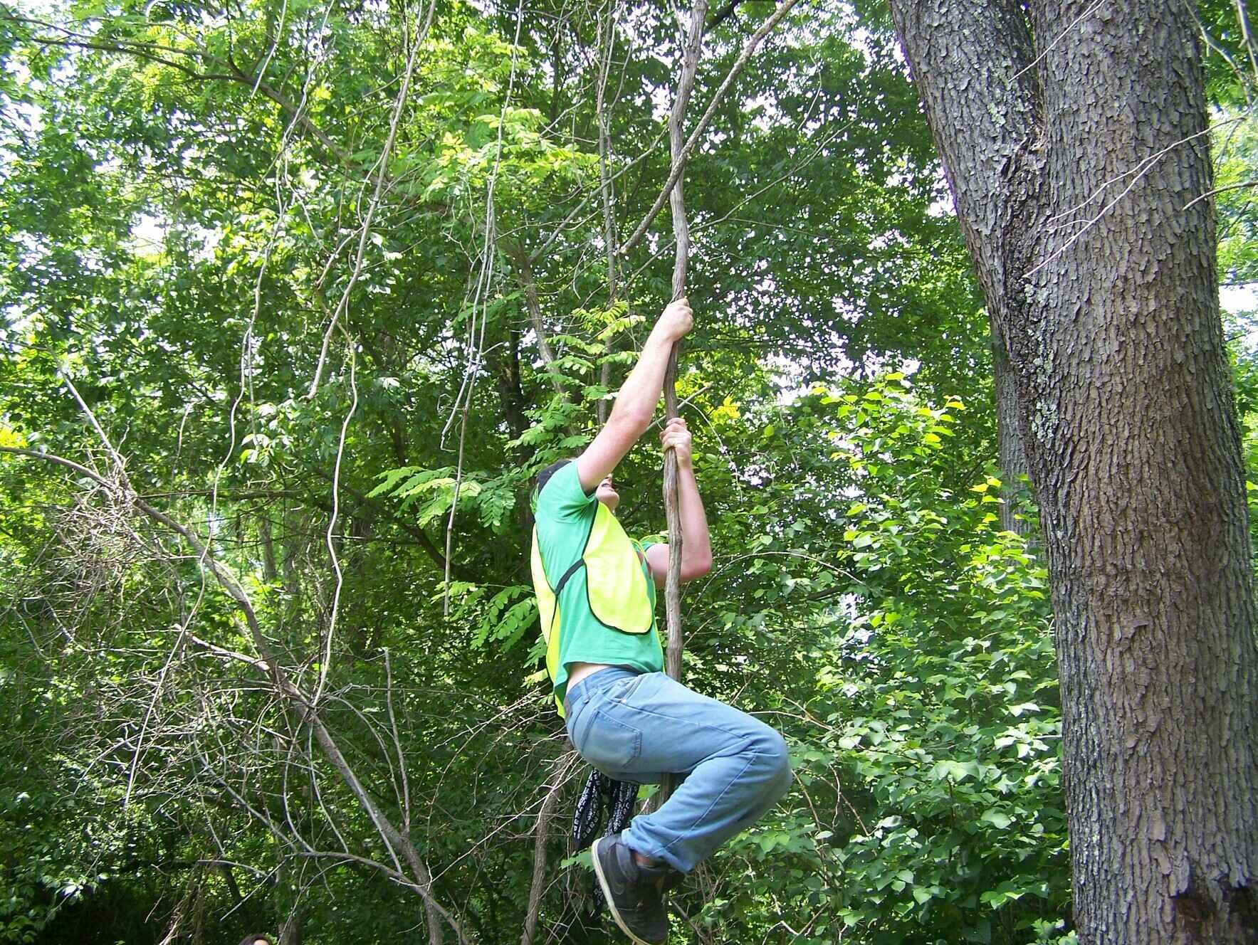 Hominy Creek Greenway Tree Save Day image