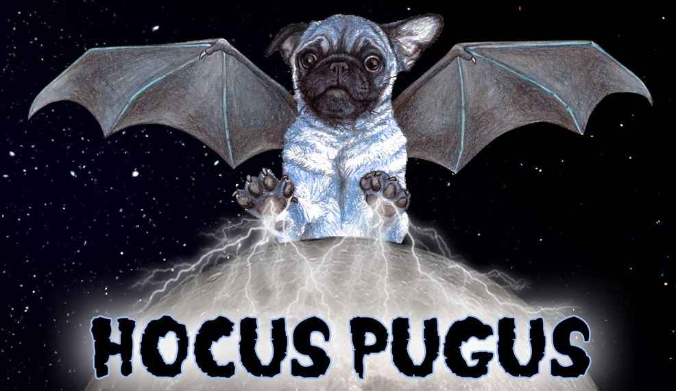 4th Annual Pug-O-Ween - SOLD OUT! image