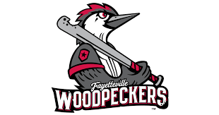 Woodpeckers Parking Pass image