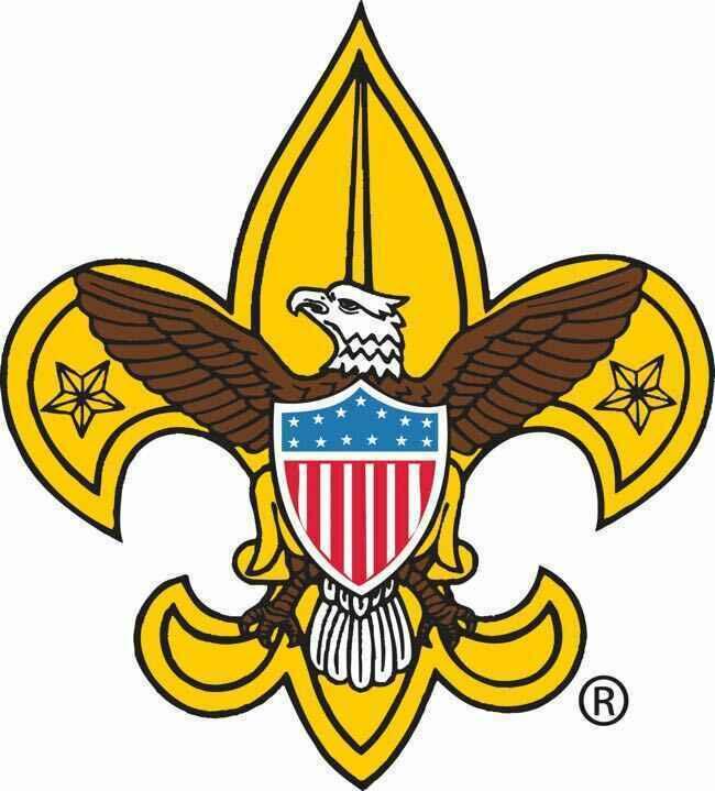 Boy Scout Camperee image