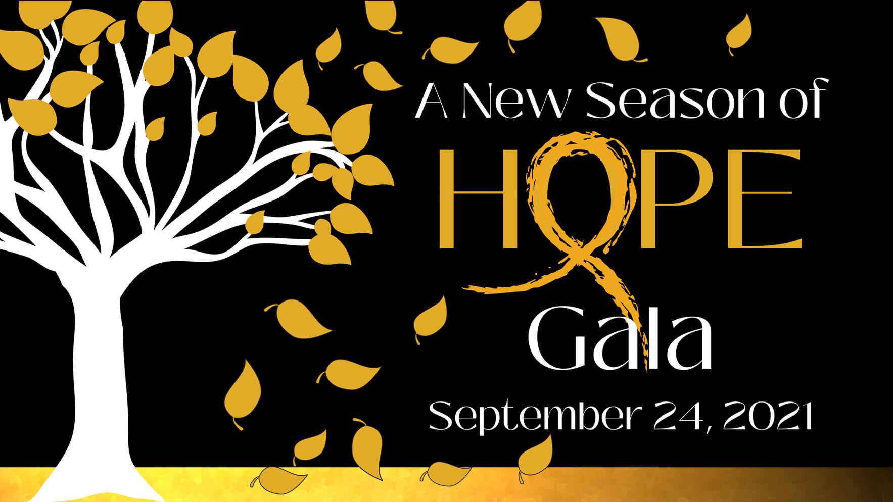 A New Season of Hope ~ Hope Gala 2021 image
