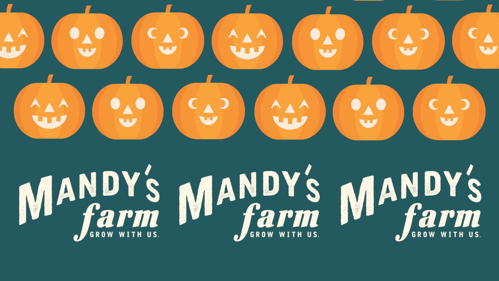 Mandy's Farm Harvest Festival Sponsorships image