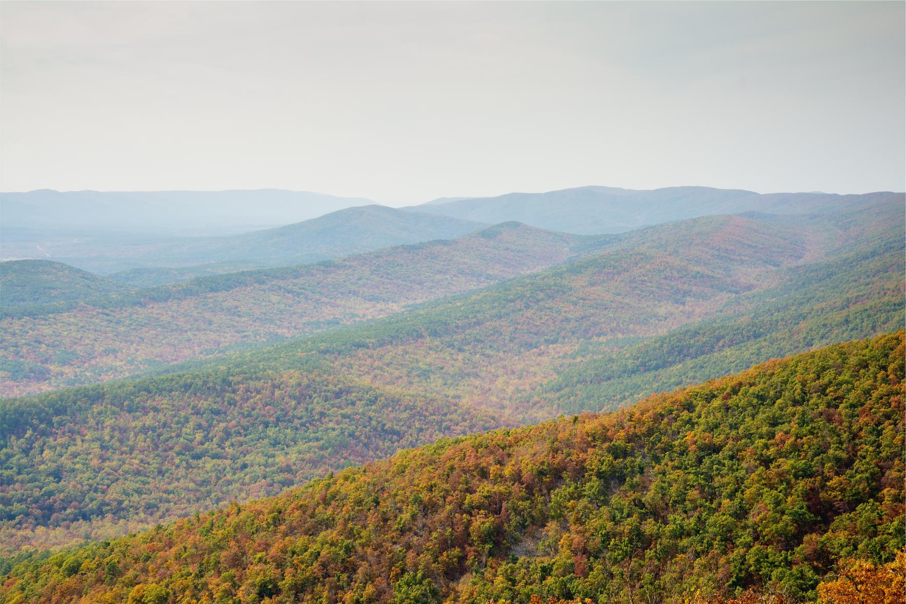 Arkansas Environmental Policy Summit image