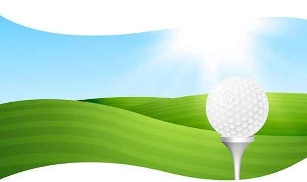 Paws Place Annual Golf Outing Golfer Signup image