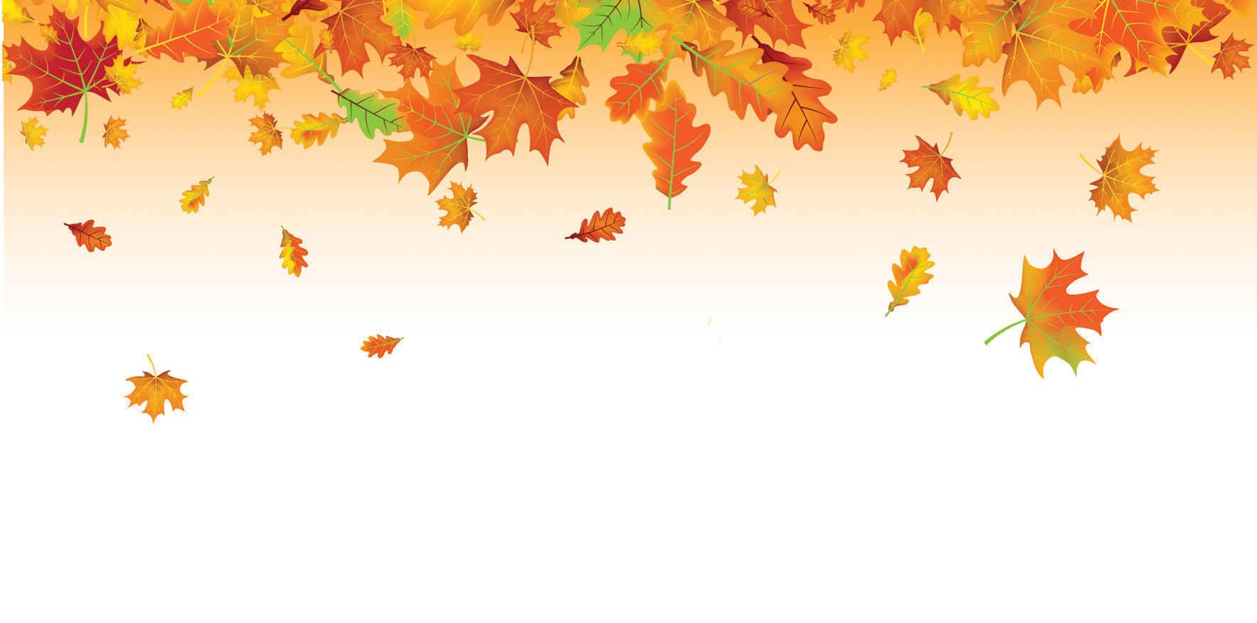 Fall Celebration 2018 image