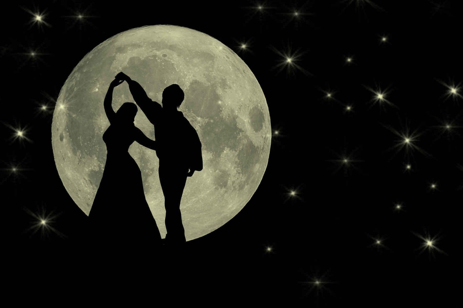 Moonlight & Mittens Gala image