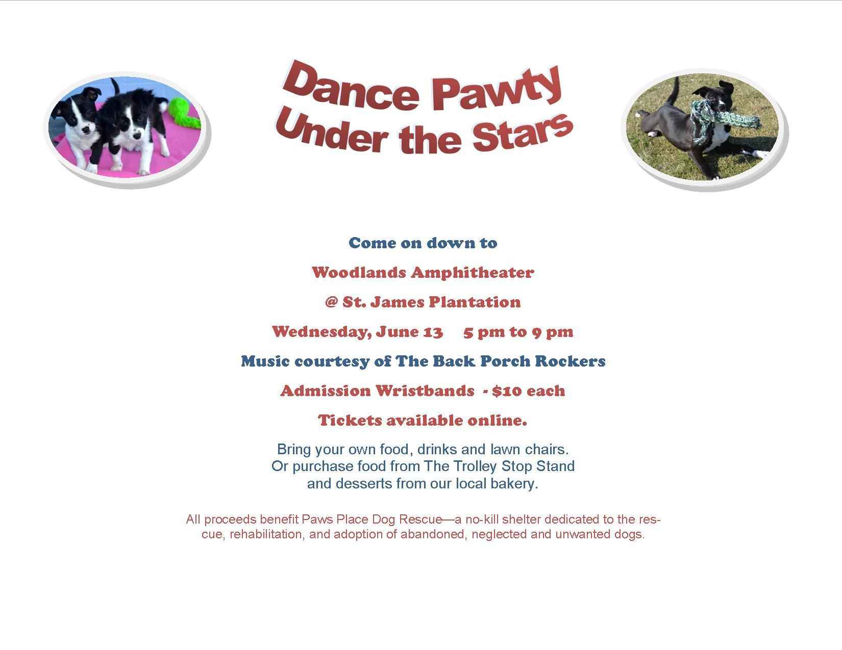 Paws Place Dance Pawty Under the Stars image