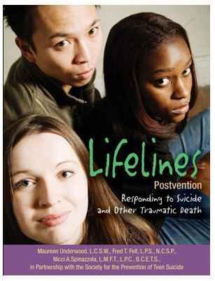 Lifelines Postvention Workshop image