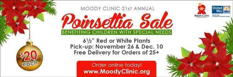 21st Annual Poinsettia Sale  image
