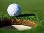 46th Annual Msgr. Leddy Golf Classic image