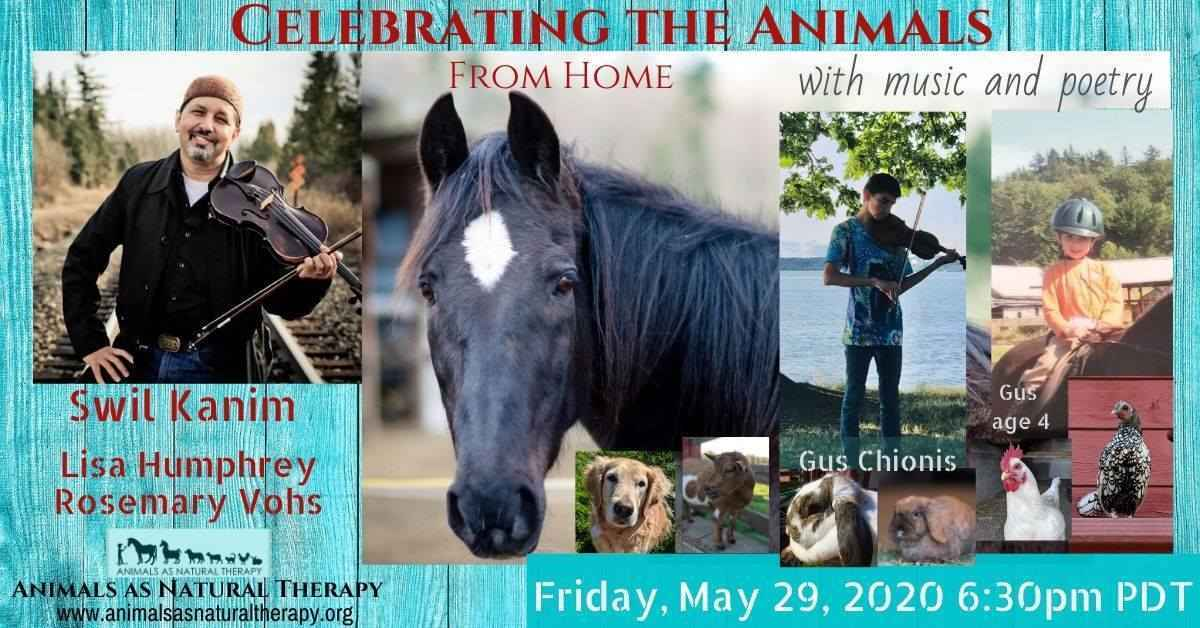 Music & poetry to benefit ANT! image