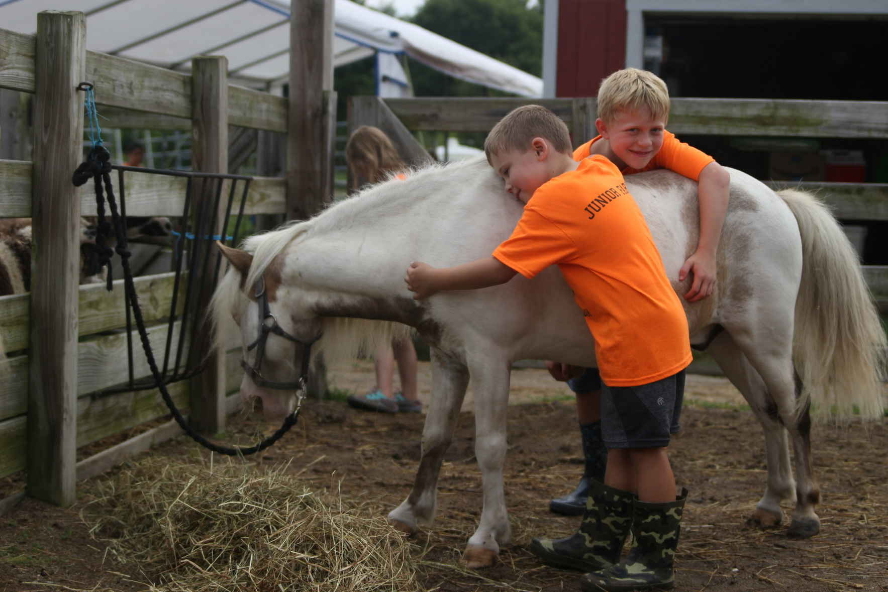 Donate Now to Support Sunny Rock 4-H image
