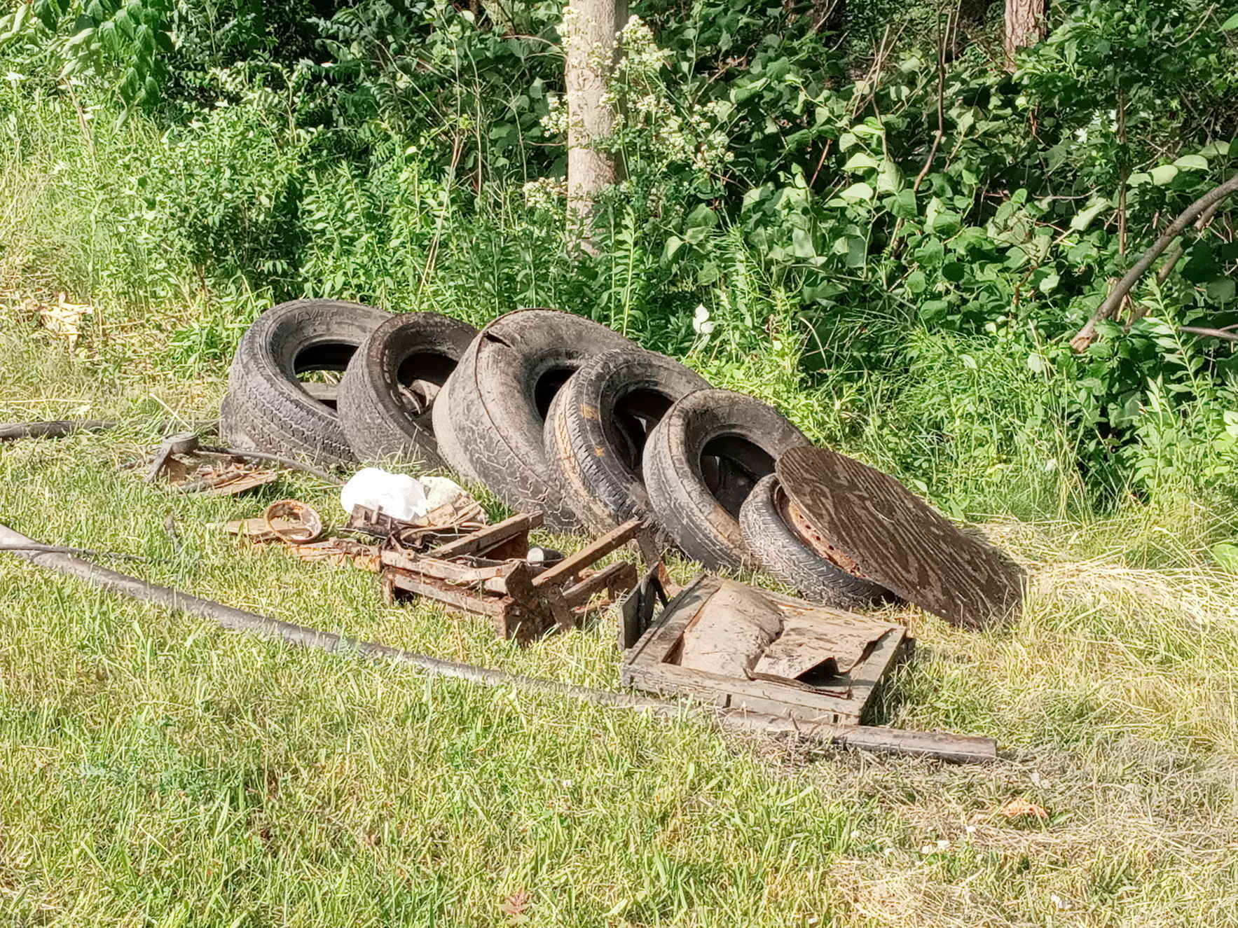 Help Keep Tires Out of the Lackawanna River Watershed! image