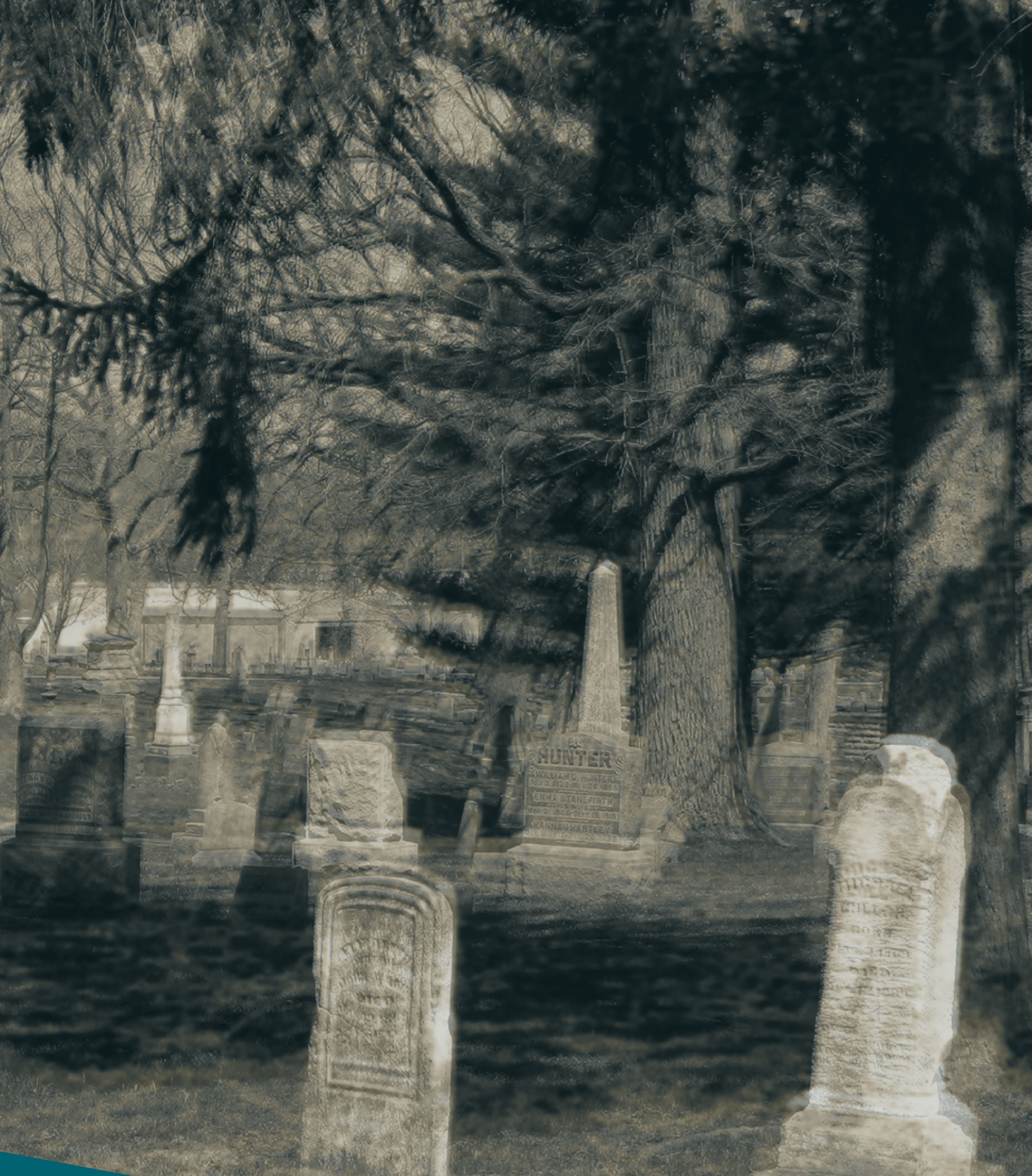 Support the Cemetery Walk with a Donation! image