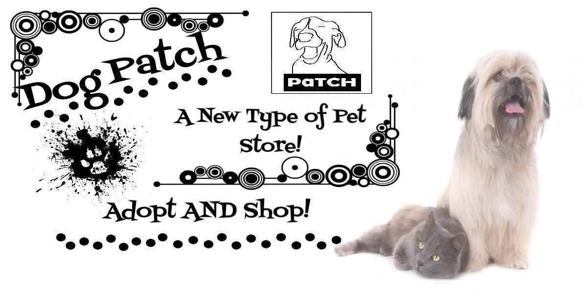 Please Help Dog Patch in its Mission to Find the Perfect Human for Each of Its Animals! image