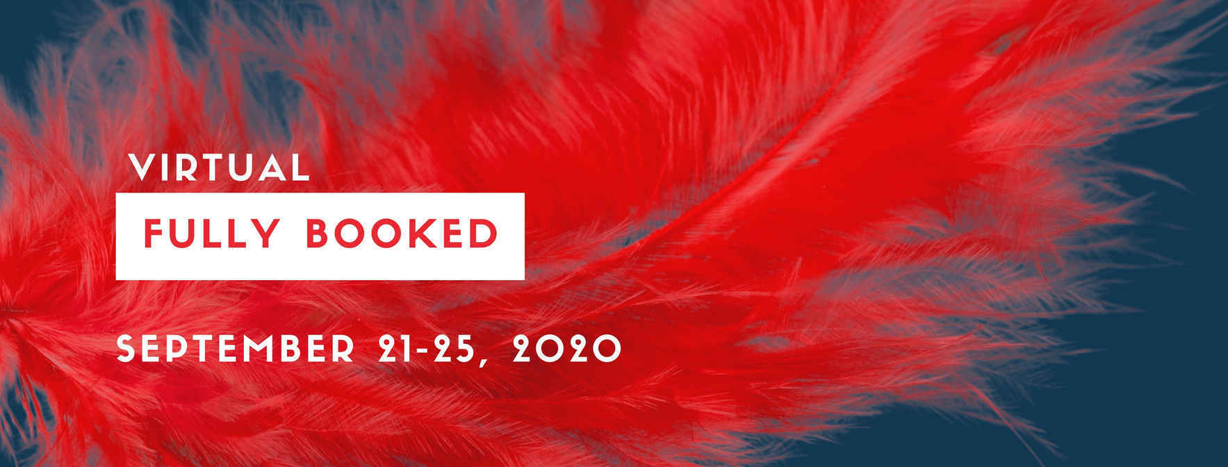 2020 Fully Booked: 5th Annual Tuleburg Press Fundraiser image