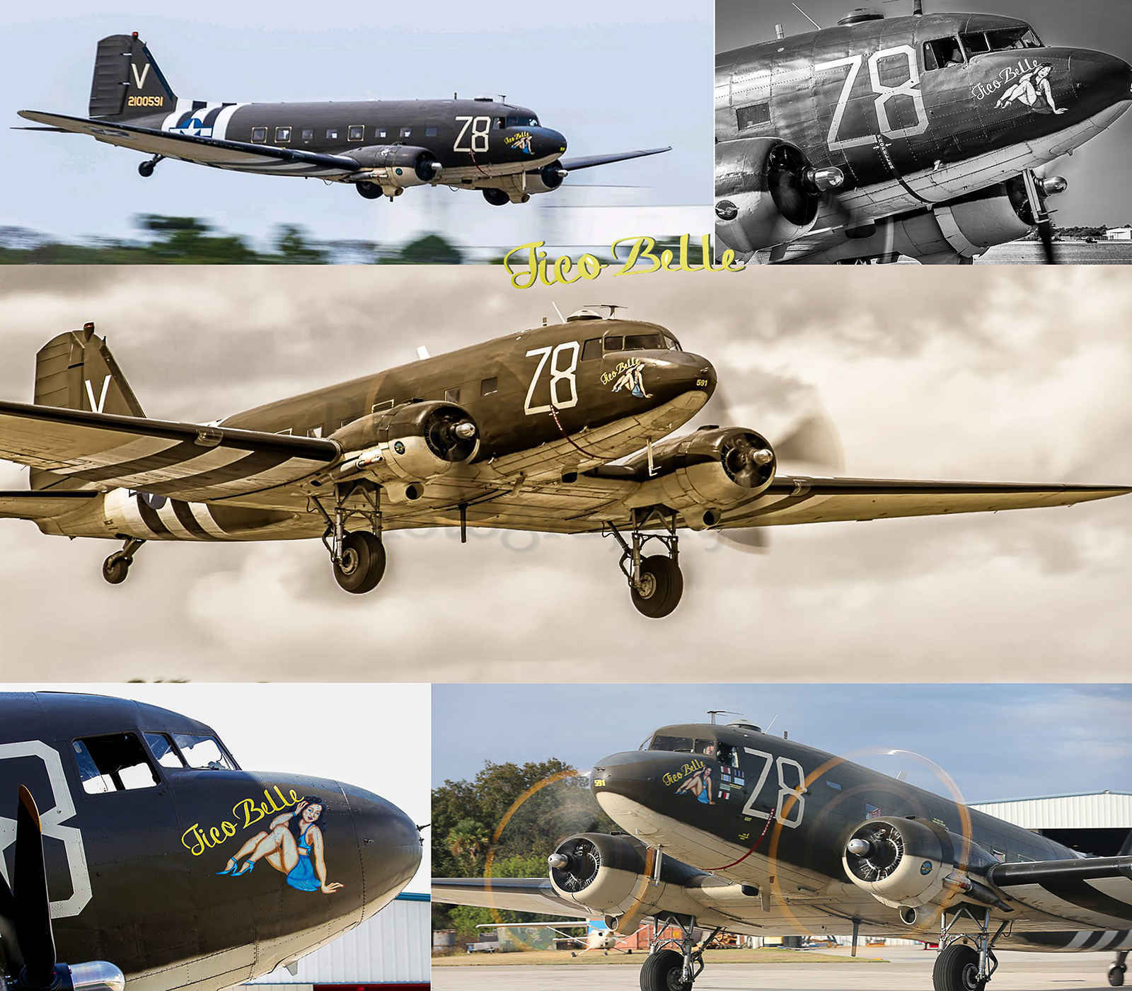 Donate to keep our c-47 The Tico Belle Keep her Flying image