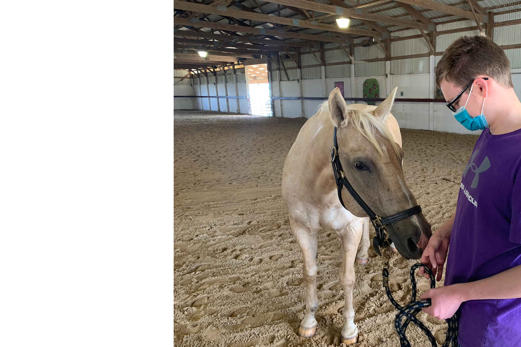How touching to see student and horse reunite! image