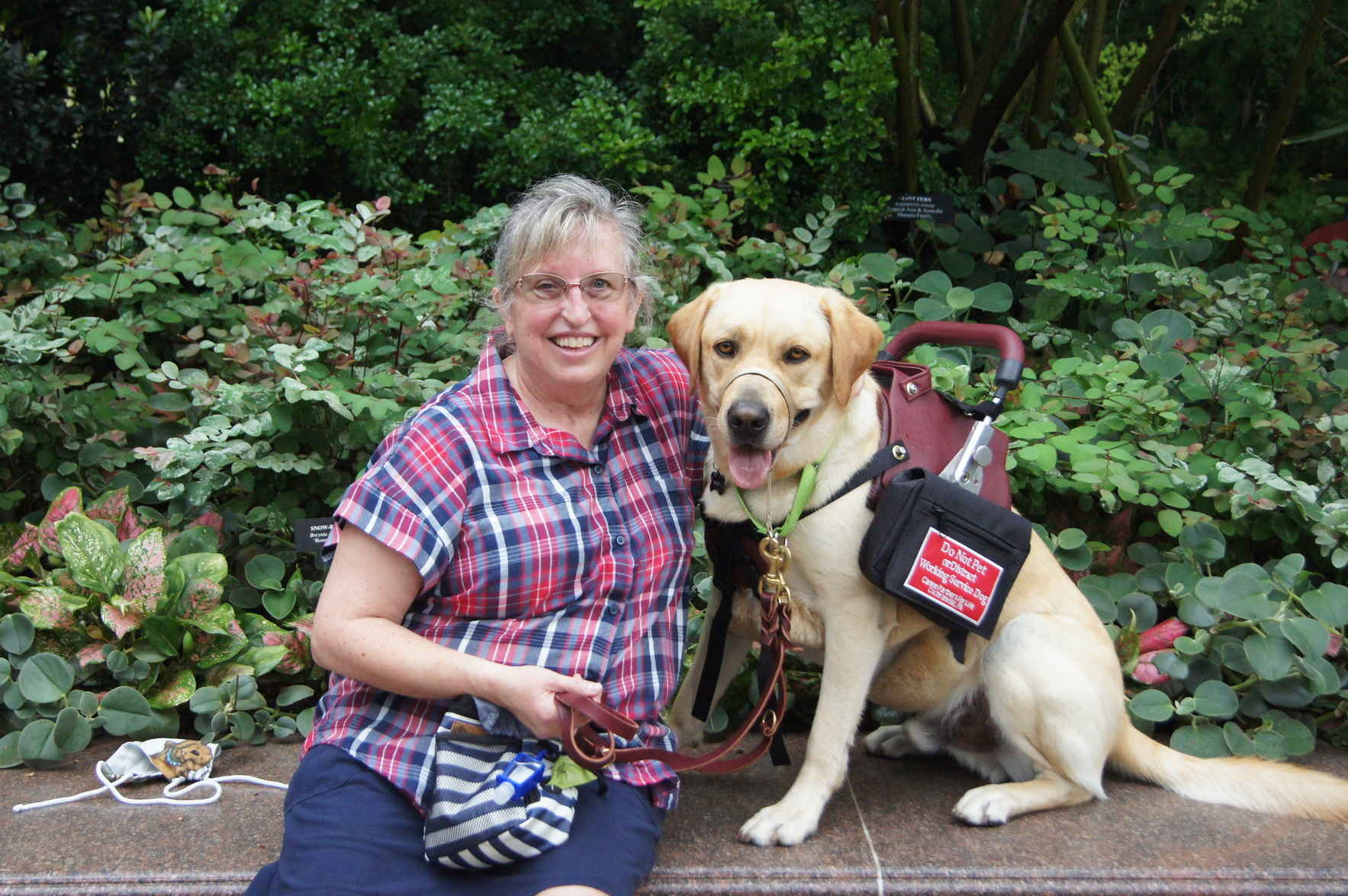 Support Canine Partners for Life this GivingTuesday! image