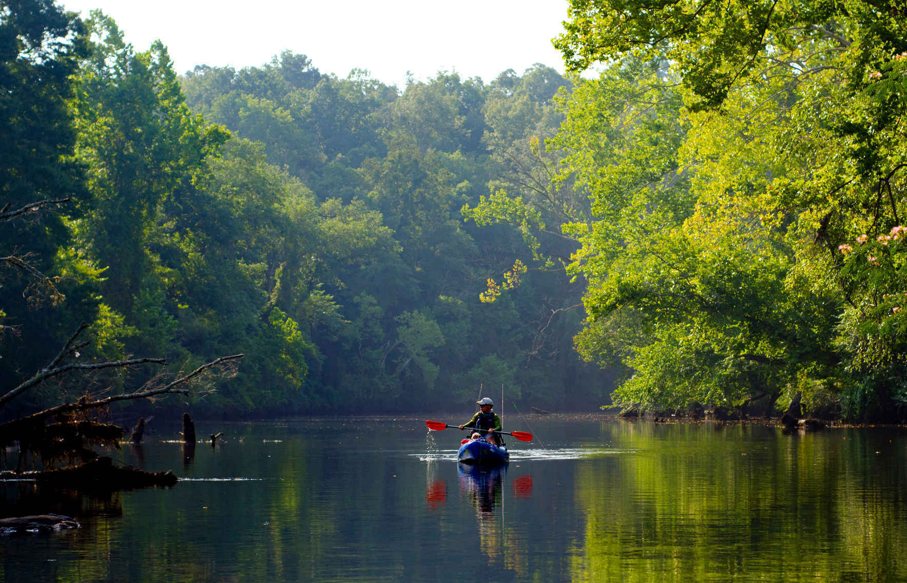 Donate to preserve our Chattahoochee image